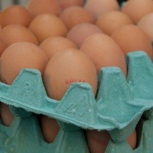 Cajas de huevos preparadas para su transporte